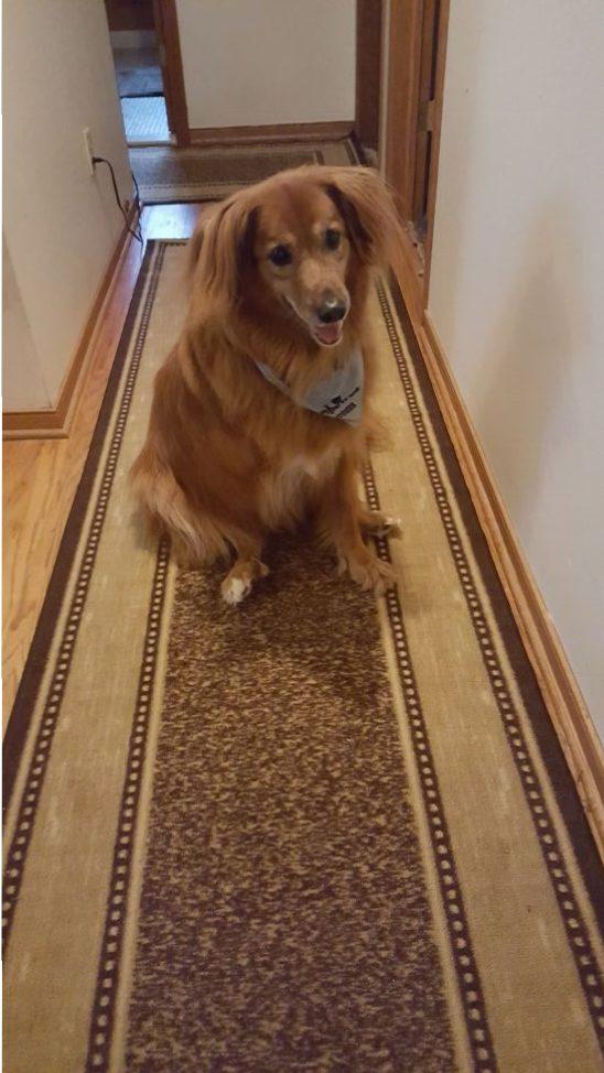 Murphy appreciated no-slip floors.